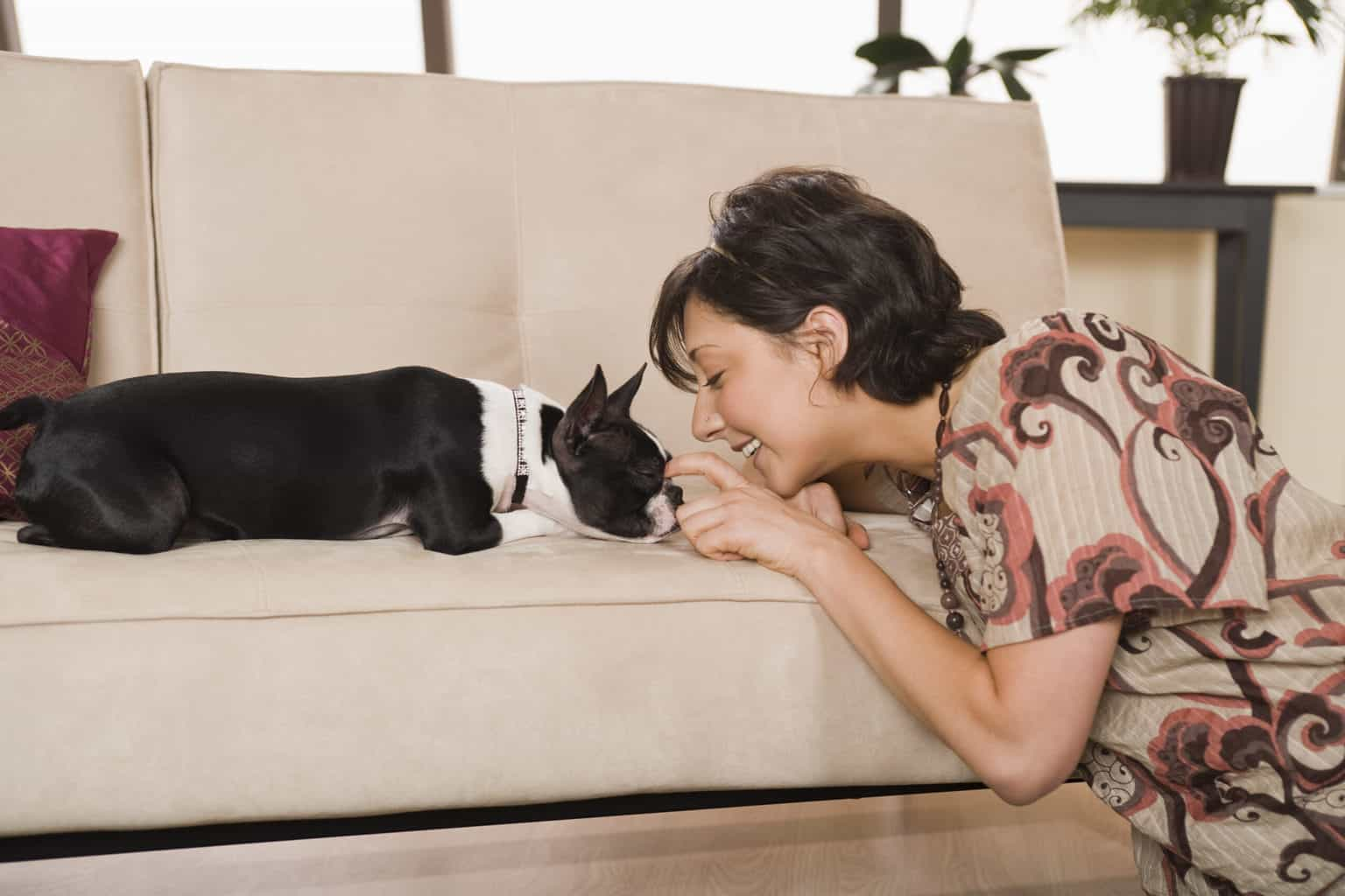 Woman with a Boston Terrier