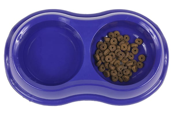 Dog food in a blue plastic bowl