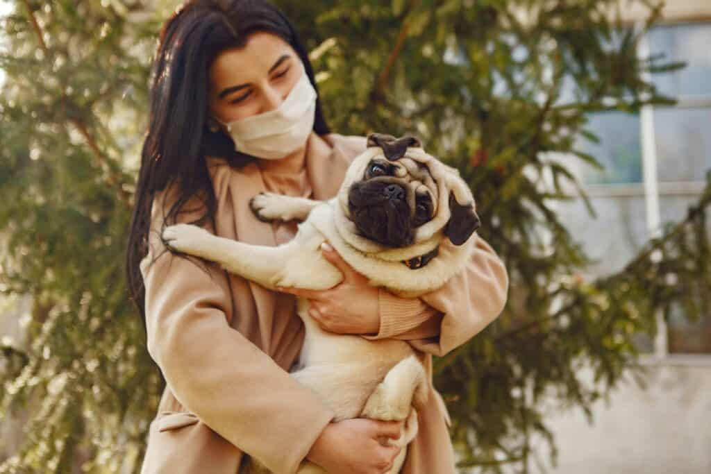 Woman cradling a Pug