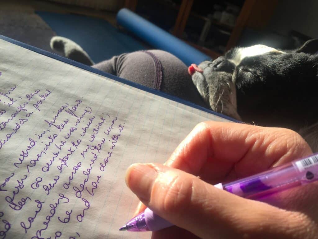 Boston Terrier sitting beside its owner while writing