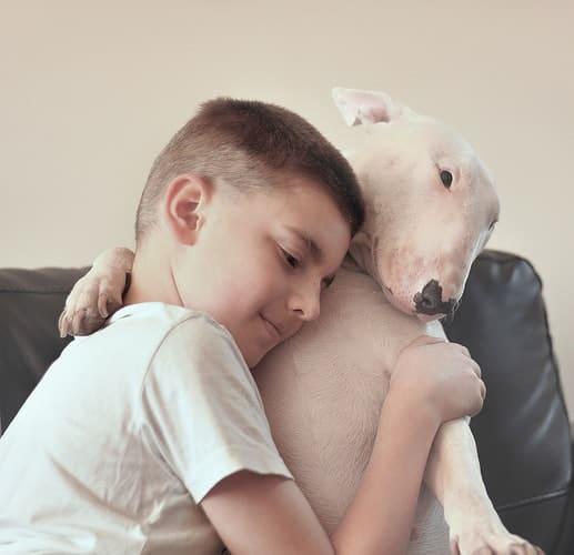 Boy hugging his English Bull Terrier