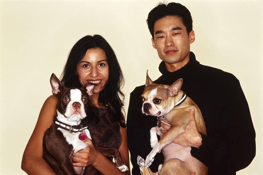 Man and woman with dogs that are breeding partners